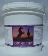 Dynamic Trio